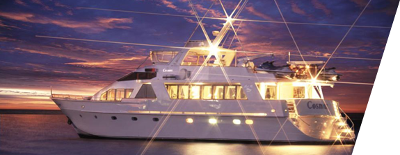 Finest sydney harbour cruise experience for wedding party boat wedding cruises sydney harbour party boat hire sydney filmwisefo